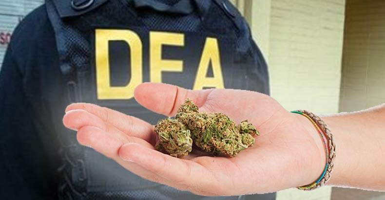 The DEA Finally Removes Some Cannabis Myths from Website