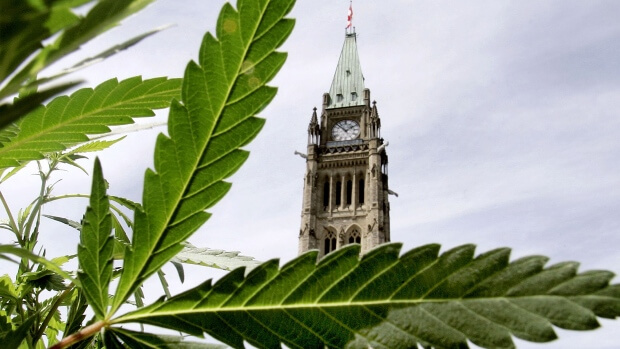 Federal Task Force Recommendations on Cannabis in Ontario, will it really work ?
