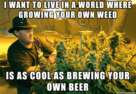 As cool as brewing your own beer