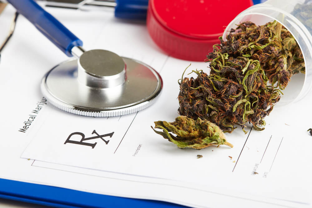 Breaking News: No-One Has Ever Died From A Cannabis Overdose