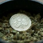 Why You Should Put a Coin in Your Grinder