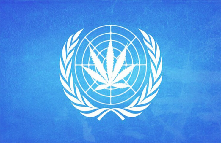 The United Nations Has Called For Worldwide Drug Decriminalization