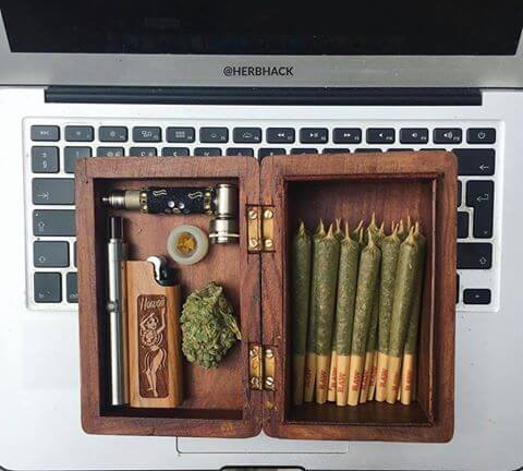 Innovative Weed Accessories