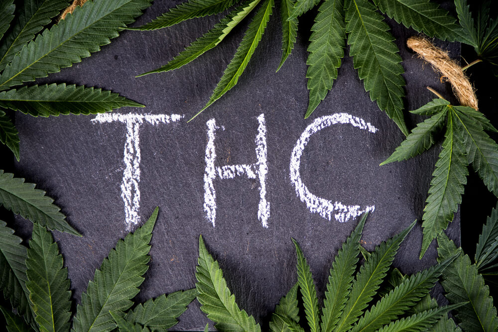 What is THC and how does it work?