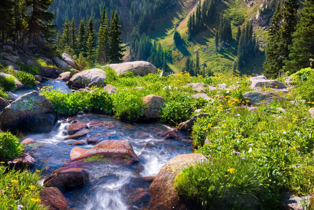 Boulder Colorado Weed Cities