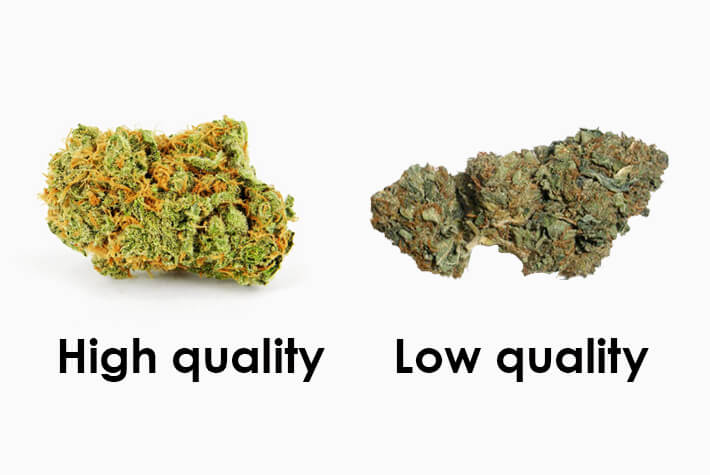 Good Weed VS Bad Weed – How To See The Difference Before You Smoke It!