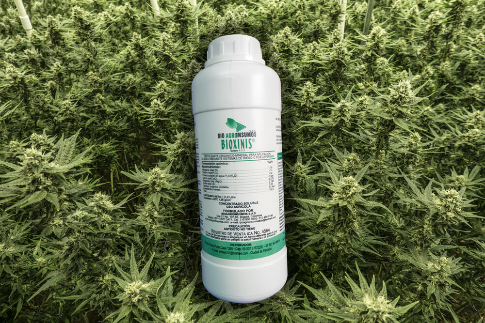 "3 Benefits of Bioxinis ""all-in-one"" for Beginner & Seasoned Grower"