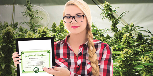 Cannabis Training University Teaches You Everything You Need To Know About Cannabis
