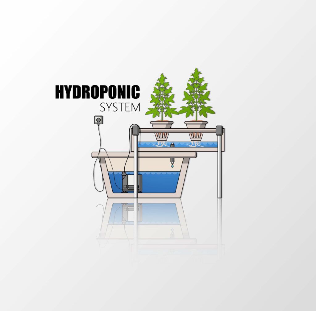 Hydroponic Gow Systems