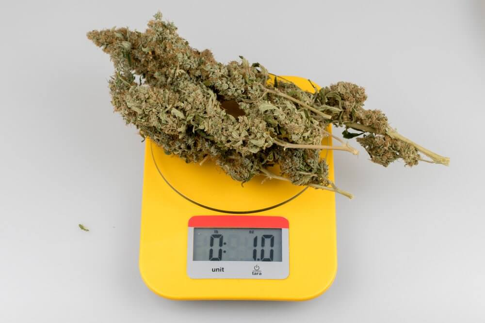 one ounce of cannabis on scale