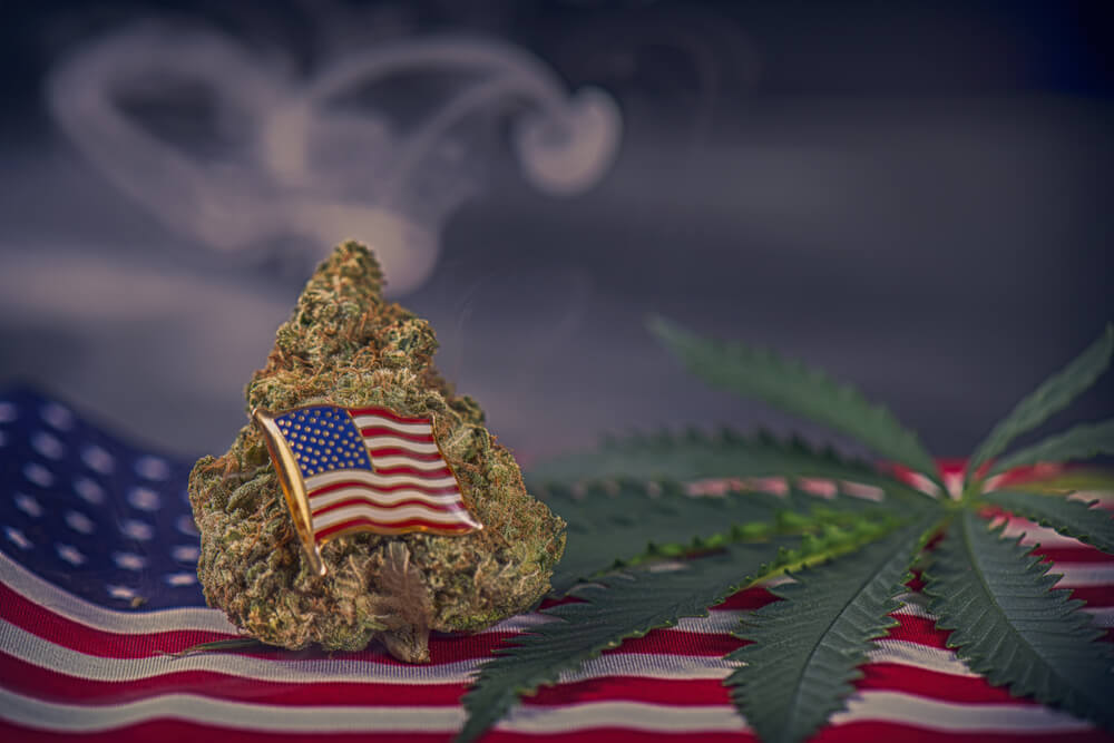 Does Medical Marijuana Help Veterans Suffering from PTSD?