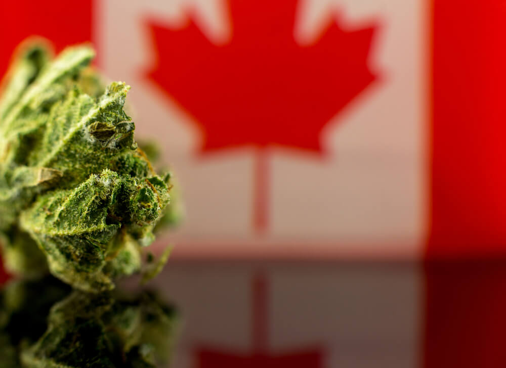 How To Get Your Medical Cannabis Card in Canada