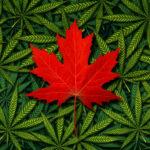 Cannabis Legal Status In Canada