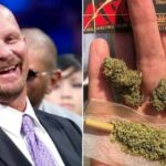 Steve Austin Cannabis Instead of Booze