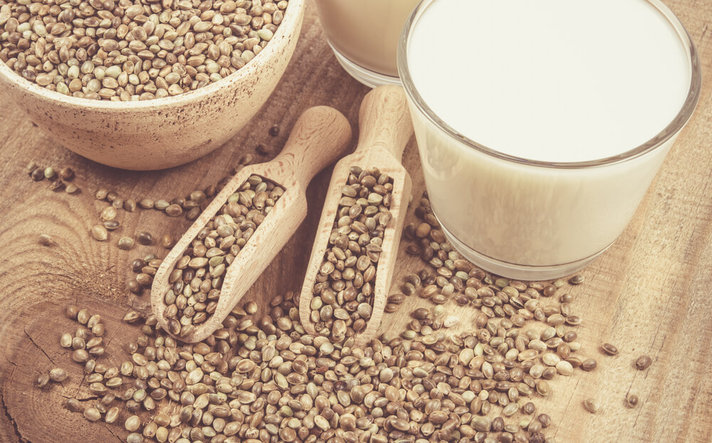 10 Incredible Benefits of Organic Hemp Milk (Scientifically Proven)