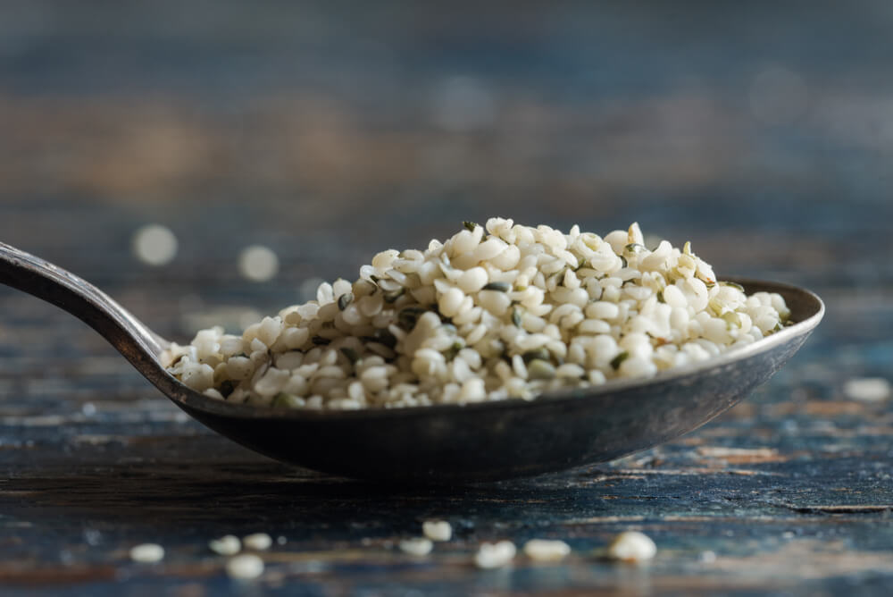 Hemp Seeds are High in Protein