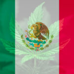 Mexico's Supreme Court Legalizes Cannabis For Recreational Use