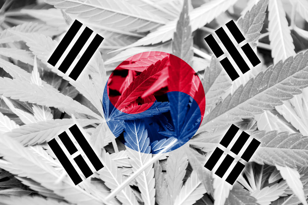 South Korea Is The First Country In East Asia To Legalize Medical Cannabis