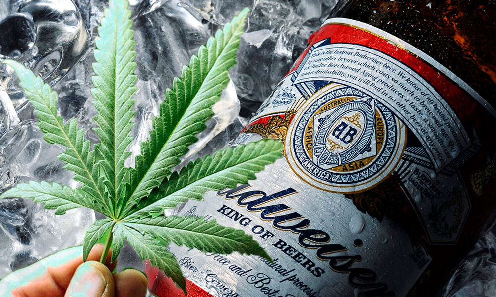 Budweiser Teams Up With Tilray To Bring Cannabis Drinks To The Market
