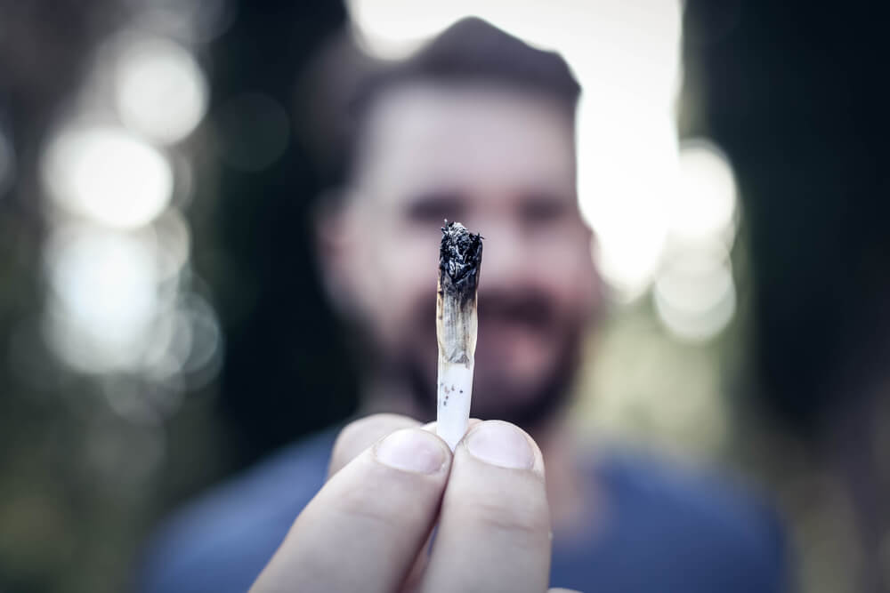 Survey: Almost 50% Of Cannabis Users Go To Work High