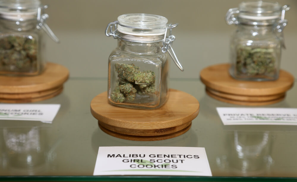 Dispensary Weed VS Street Weed – What's Better?
