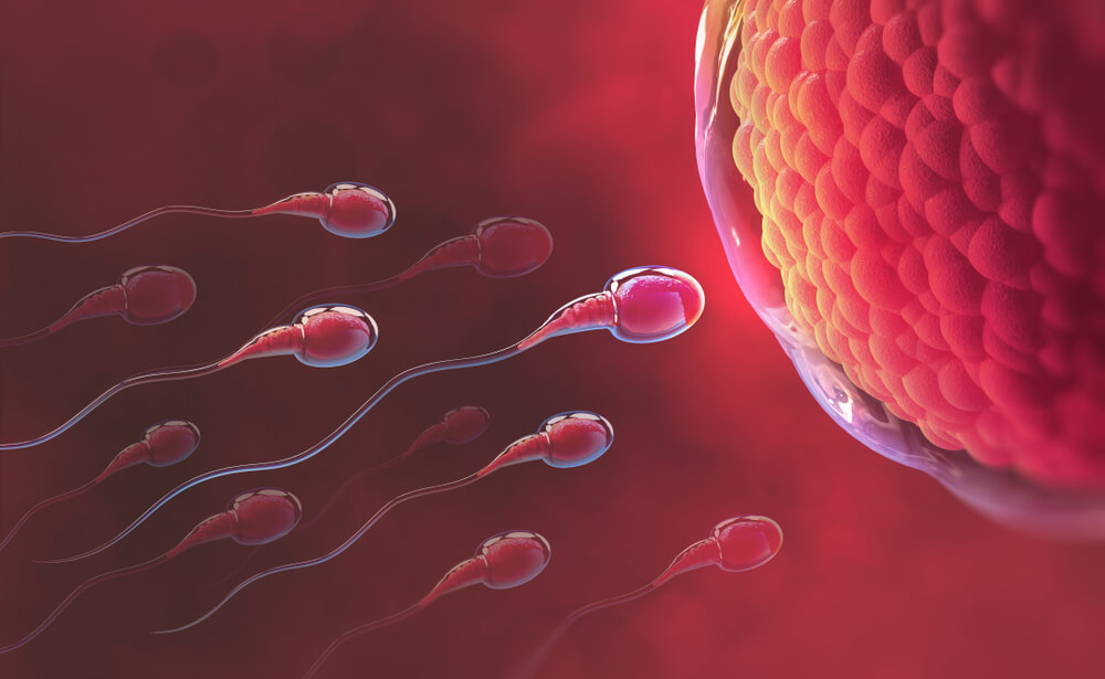 Medical Study: Exposure To Cannabis Alters The Genetic Profile Of Sperm