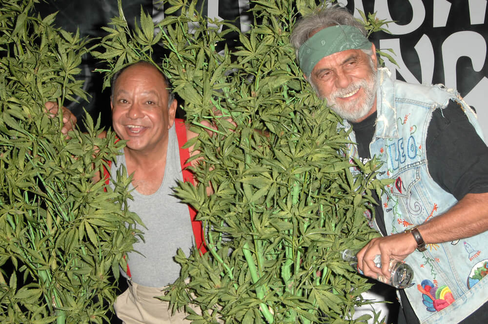 Cheech and Chong Are Finally Opening a Dispensary