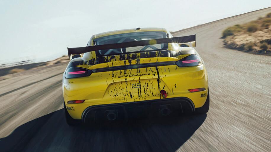 Porsche Hemp Car Back