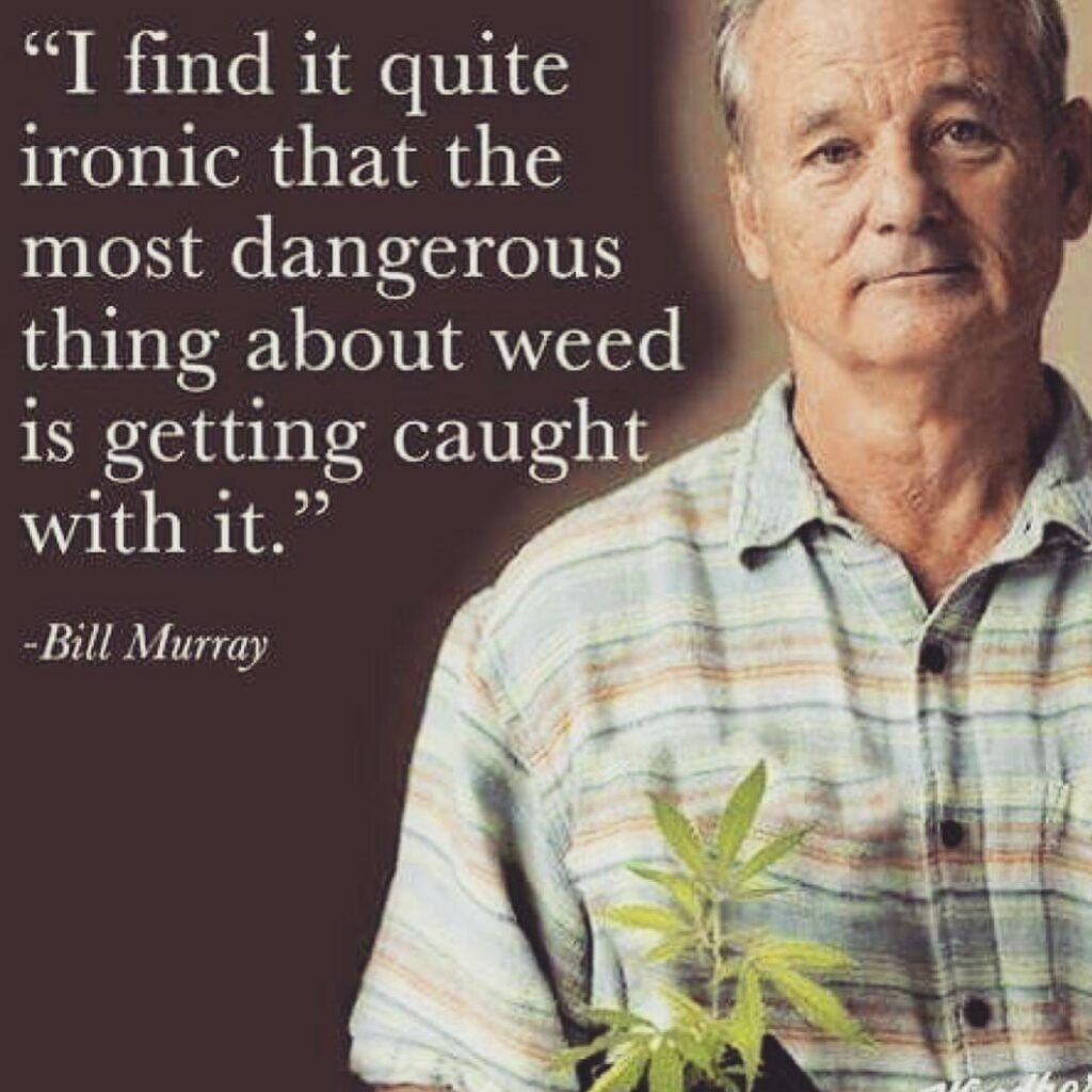 Bill Murray Getting Caught With Weed
