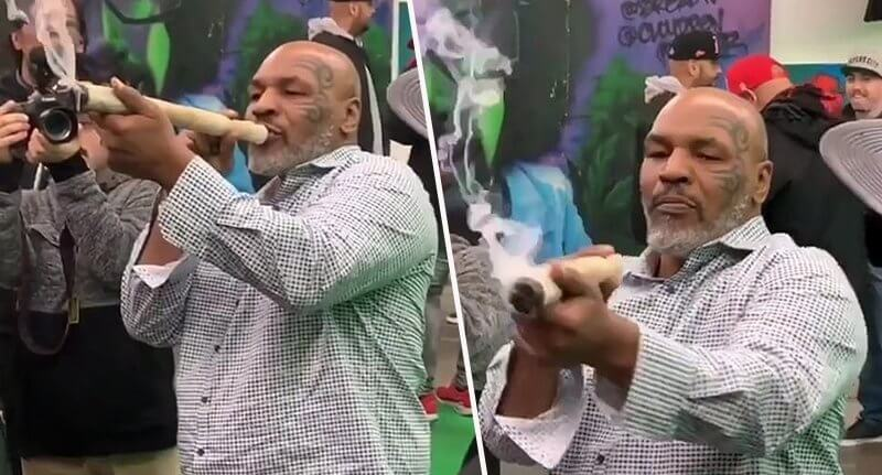 Mike Tyson Smokes Huge Joint At Weed Festival [Video]