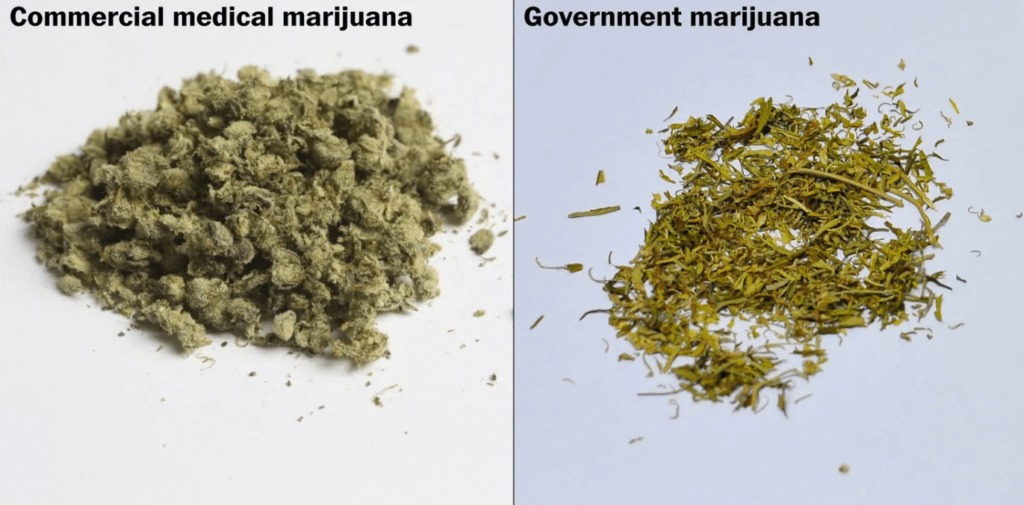 Government Ditch Weed Comparison