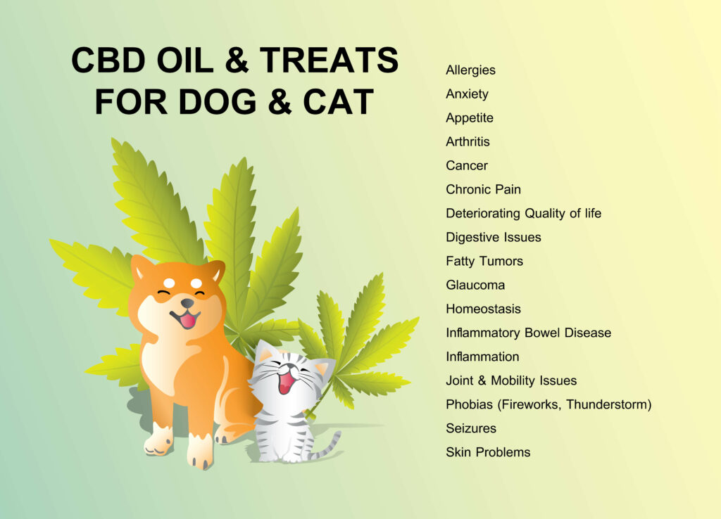 What Can CBD Oil Do For Cats