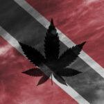 Trinidad Tobago Decriminalizing Weed