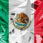 Mexico legalizing cannabis