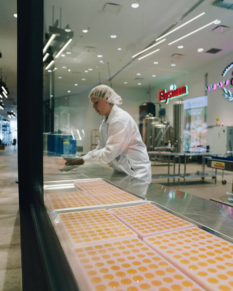 A worker pours molten jelly into gummy bear molds at Planet 13 in Las Vegas