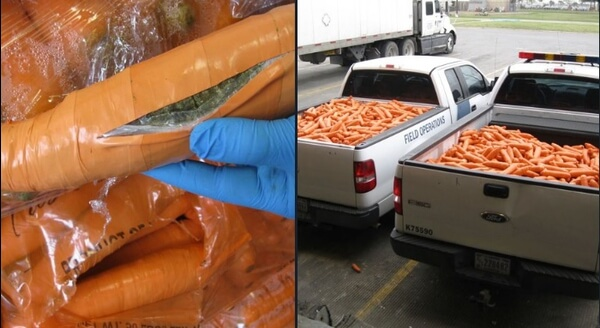 8 Crazy Ways People Tried to Smuggle Weed (And Failed)