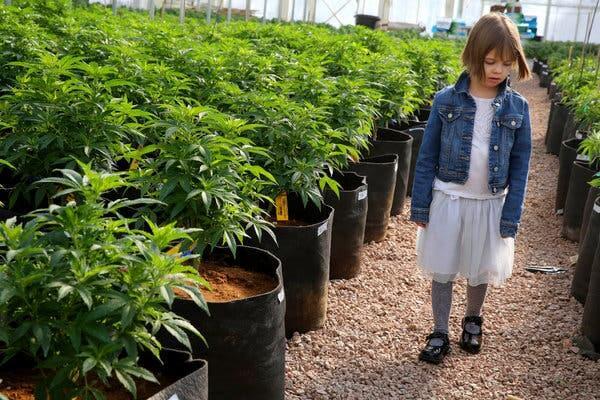 Charlotte Figi, the Girl Who Changed Medical Cannabis, Dies of Cardiac Arrest