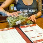 A budtender at the Barbary Coast Dispensary in San Francisco weighs out cannabis flower.