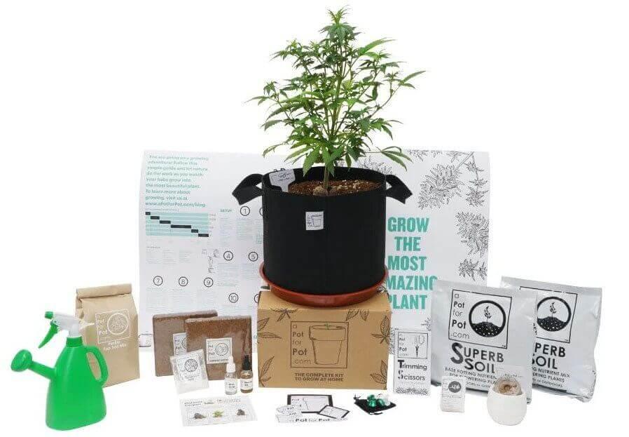 The Pot for Pot grow kit