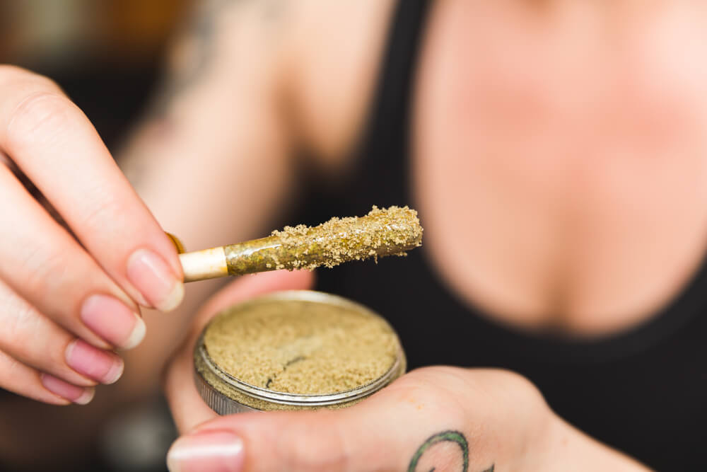 Woman holding a cannabis or marijuana joint in her hand. Joint is dipped in oil or wax and sprinkled with kief (THC powder)