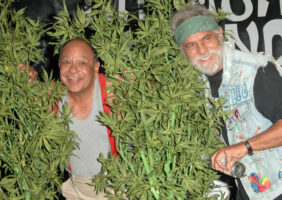 Chech and Chong Dispensary