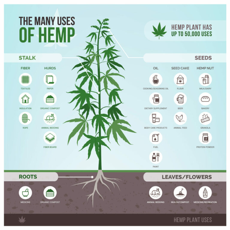 What Can Hemp Be Used For