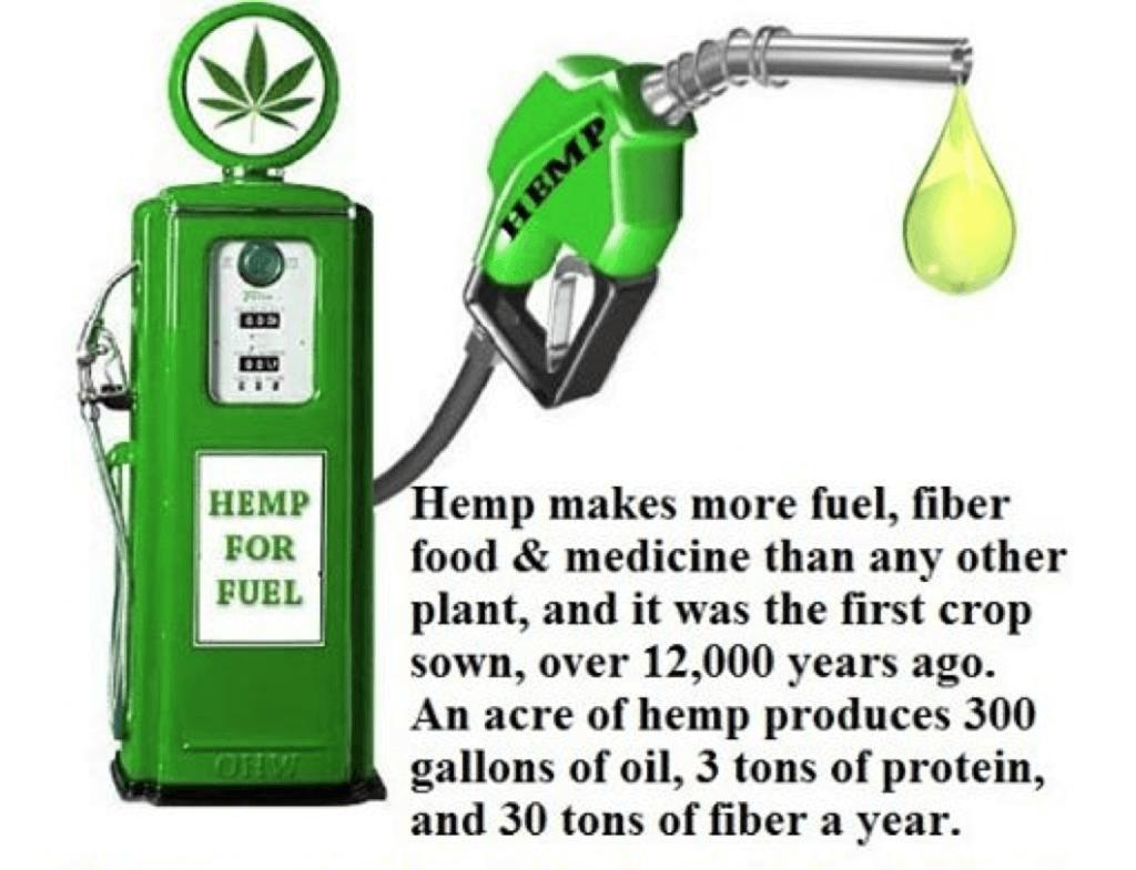 Facts about Hemp Biofuel