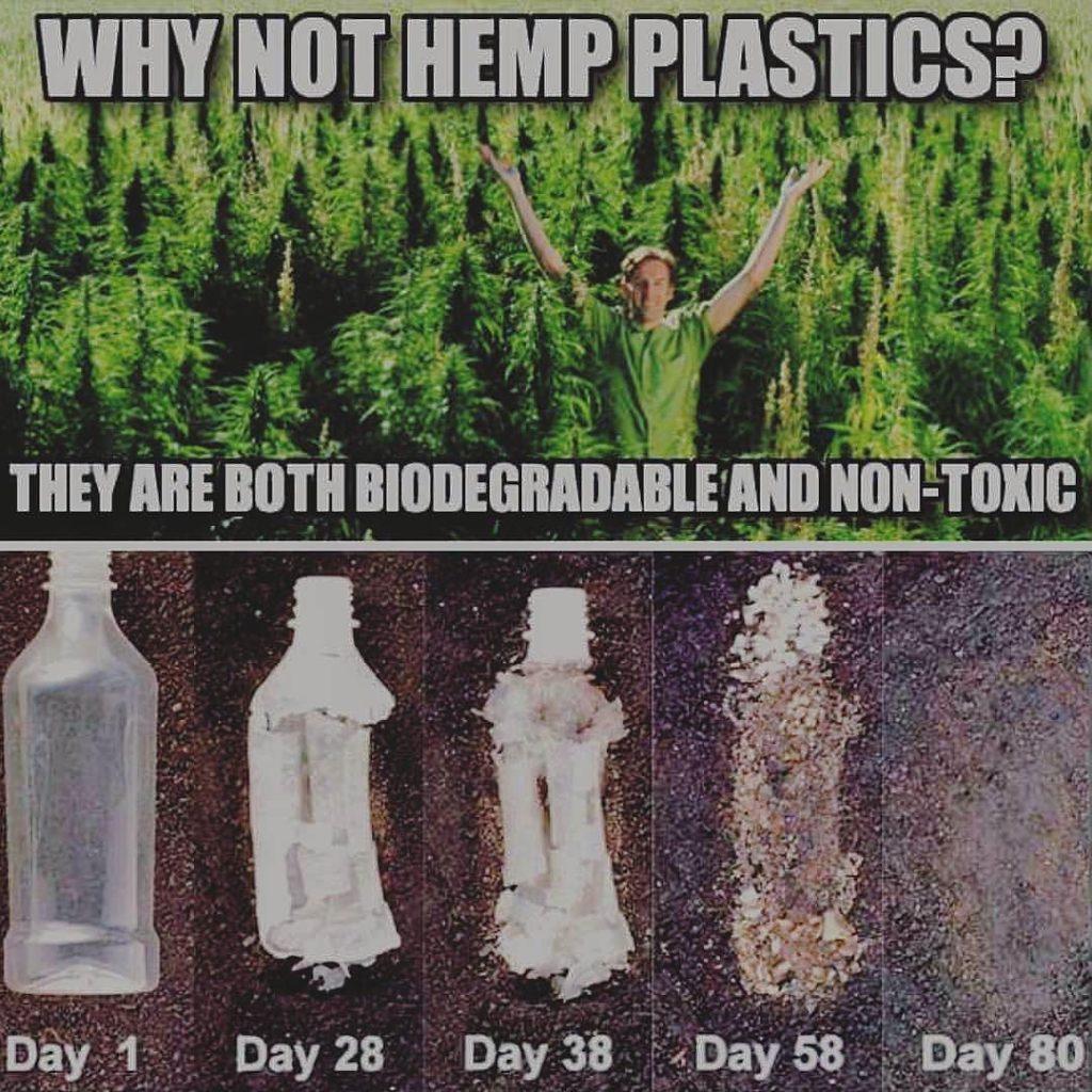 Hemp plastics degradable