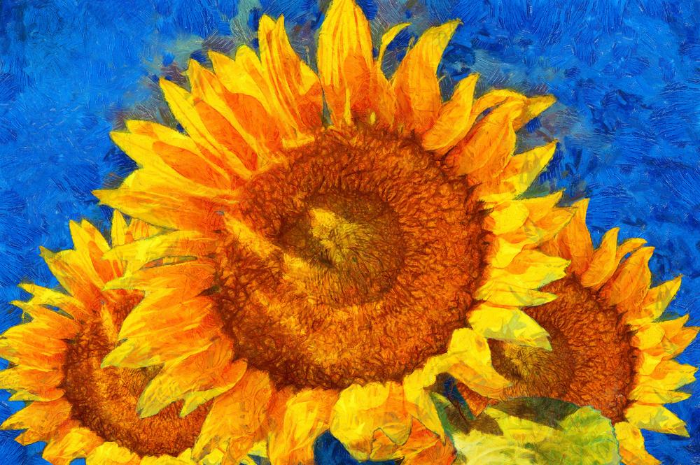 Van Gogh painted on hemp