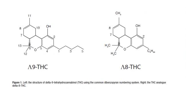 Delta-8 THC VS Delta-9 THC Cannabinoid